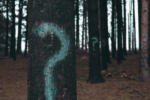 trees with question marks